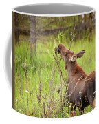 Calf In The Willows Coffee Mug