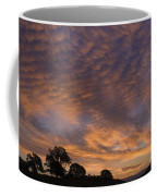 California Oaks And Sunrise Coffee Mug