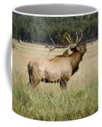 Call Of The Wild 2 Coffee Mug