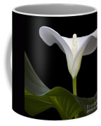Calla Beauty Coffee Mug