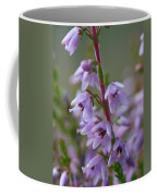 Calluna Vulgaris 4  Coffee Mug