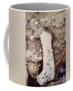 Camarasaurus Femur Covered In Burlap Coffee Mug