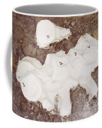 Camarasaurus Vertebrae Covered Coffee Mug
