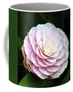 Camellia Twenty-two  Coffee Mug
