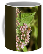Camphorweed Wildflowers And Honey Bee Coffee Mug