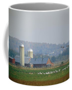 Canada Geese And Other Birds Fill Coffee Mug