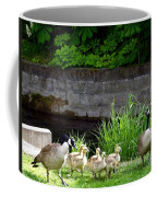 Canada Geese With Goslings Coffee Mug