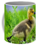Canada Gosling Coffee Mug
