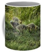 Canadian Goose Gosslings Coffee Mug