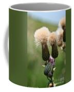 Canadian Thistle Coffee Mug
