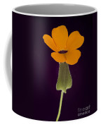 Canary Eye Coffee Mug