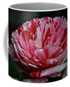 Candy Cane Rose Coffee Mug