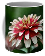 Candy Color Zinnia Coffee Mug