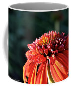 Candy Corn Cone Flower Coffee Mug