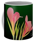 Canna Lilly Whimsy Coffee Mug