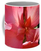 Canna Lily Close Up Coffee Mug
