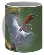 Canvasback In Action Coffee Mug