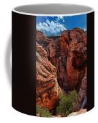 Canyon Glow Coffee Mug by Rick Berk