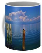 Cap Ferret  Coffee Mug
