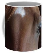 Caravaggio 02 Coffee Mug