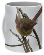 Cardinal Cold Winter Stare Coffee Mug