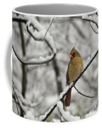 Cardinal Female 3652 Coffee Mug