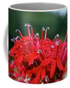 Cardinal Flower Close Up Coffee Mug