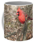 Cardinal In A Bush Coffee Mug