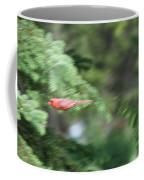Cardinal In Flight Coffee Mug