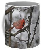 Cardinal Male 3666 Coffee Mug
