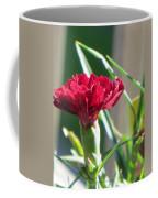 Carnation Named Hounsa Coffee Mug