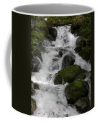Cascades Below Coffee Mug