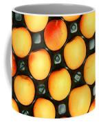Castlebrite Apricot Coffee Mug by Photo Researchers