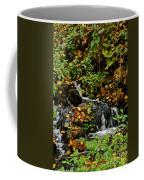 Casual Creek Coffee Mug