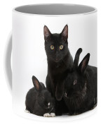 Cat And Rabbits Coffee Mug