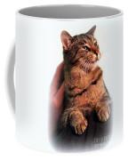 Cat Heaven Coffee Mug