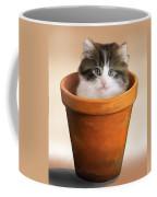 Cat In A Pot Coffee Mug