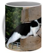 Cat Looking Thru The Knot Hole Coffee Mug