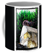 Cat On Medieval Wall Coffee Mug