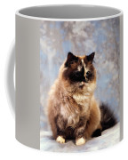 Cat Portrait Of A Cat Coffee Mug