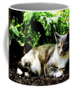 Cat Relaxing In Garden Coffee Mug