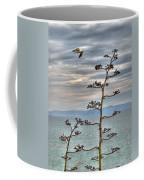 Catalina Gull And Channel Coffee Mug