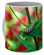 Caterpillar Before The Butterfly 1 Coffee Mug