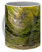 Cathedral Falls West Virginia Coffee Mug
