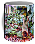 Catoctin Cliff Trail Coffee Mug