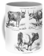 Cattle Breeds, 1856 Coffee Mug by Granger