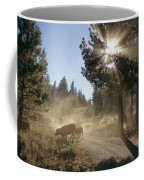 Cattle Cross A Gravel Road On A Fall Coffee Mug