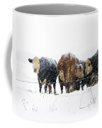 Cattle In A Snowstorm In Southwest Michigan Coffee Mug