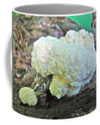 Cauliflower Mushroom On Log Coffee Mug