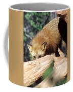 Cautious Red Fox Coffee Mug